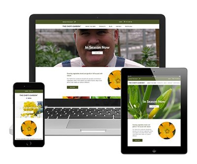 Responsive Web Design and Development Image